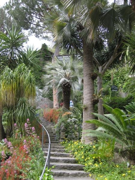 Một góc vườn trong villa La Mortella của vợ chồng nhà soạn nhạc William Walton