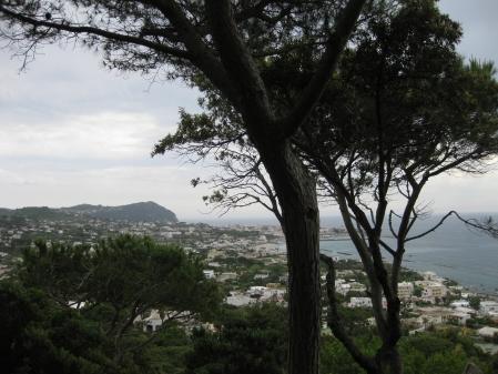 Vịnh Napoli nhìn từ La Mortella