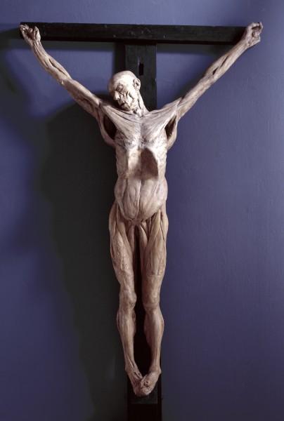 Tượng đổ khuôn James Legg bị đóng đinh lột da trên thập tự trong sưu tập của Royal Academy of Arts