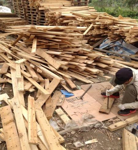 Theo http://www.palletgo-pallet.com, gỗ thông được dùng ốp trần, tường, sàn ở Việt Nam đa phần là loại gỗ thùng, ván kê các thùng hàng xuất khẩu, được đemtái sử dụng. Khung tranh và khung căng vải vẽ được làm từ loại gỗ này dĩ nhiên có nhiều lỗ đinh, và chưa hề được xử lý chống mối mọt. (Ảnh từ http://www.palletgo-pallet.com)