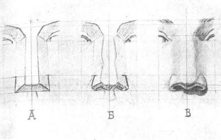 Sơ đồ dựng hình cái mũi theo D. Kardovsky