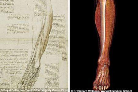 Dessin của Leonardo (trái) và hình ảnh chụp bằng công nghệ scans hiện đại sau đó 5 thế kỷ (phải).